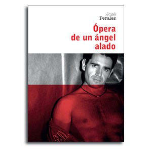 Opera de un Angel Alado portada novela tematica gay