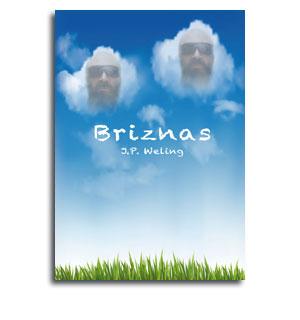 Portada novela Briznas