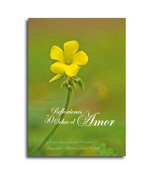 Portada del libro del amor