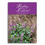 Violetas en el lodazal