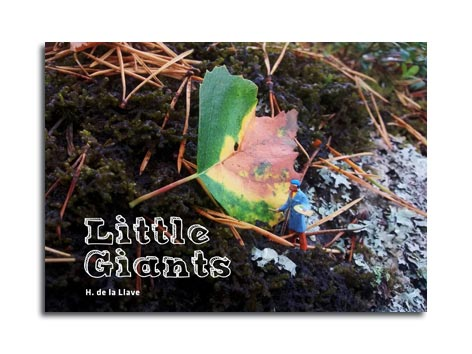 cover of little giants
